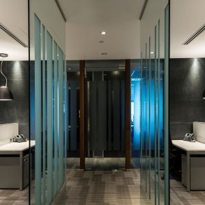 HD 500 Glass Partition Walls
